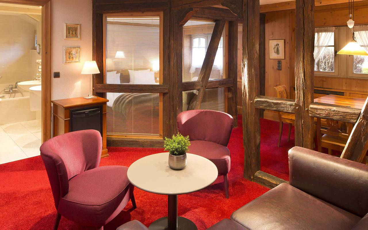Luxurious and spacious room Lieu Seminaire Strasbourg
